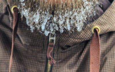Concurso de bigodes