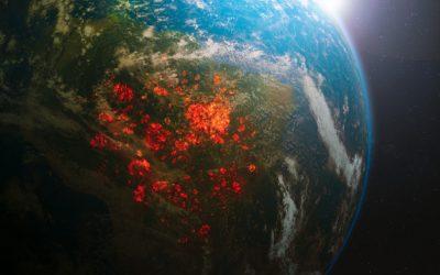 A destruição da Amazônia vai afetar também a área da cosmética e da farmacêutica